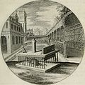Iacobi Catzii Silenus Alcibiades, sive Proteus- (1618) (14769471463).jpg