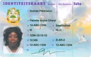 Identity Bes - Wikipedia Card