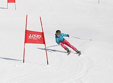 Slalom skier skiing around a pair of red poles