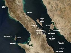 Iles de Basse-Californie Nord.jpg