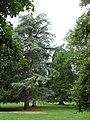 Im Farwickpark - panoramio.jpg