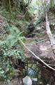 Impluvio nella Valle di Moneglia.png