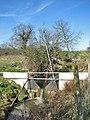 Improvised weir - geograph.org.uk - 724712.jpg