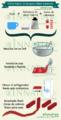 Infografia sobre como hacer ceras.png
