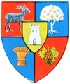 Coat of arms of Județul Satu Mare