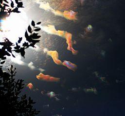 Irid clouds1