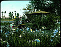 Iris garden beside water; wooden bridge to small roofed island; two women in Kimonos on bridge and one standing among flowers. (19955423311).jpg