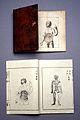 J.A. Kulmus, Tabulae anatomicae, Danzig; Wellcome L0022513.jpg