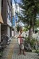 Japan 2015 (23304017585).jpg