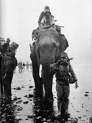 Thirty-Third Army (Japan) - Image: Japanese troops on elephant in Burma