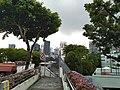 Jembatan penyeberangan di Stevens Road Singapura.jpg