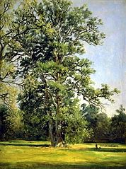 An Oak. View of the Garden at Wörlitz near Dessau