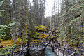 Johnston Canyon (15563508012).jpg