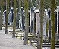 Juedischer Friedhof Mannheim 06 fcm.jpg