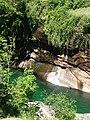Jungle in europe 10.jpg