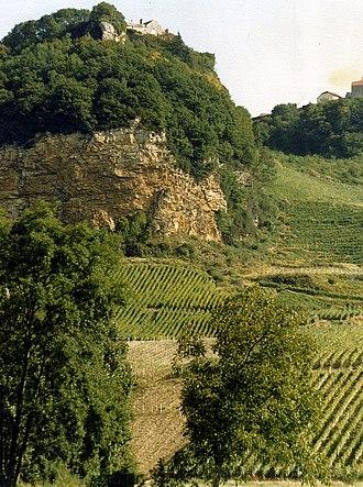 Jura wine - Hillside in Jura with vineyards.