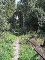 K-S 5 U potoka A. CestaPresPotok.jpg