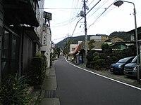 Kanagawa Prefectural Road 732.JPG