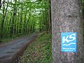 Kasselsteig markierung am altenkutschweg zum herkules.ds wmc 05 2013.jpg
