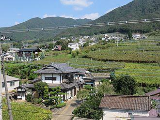 Yamanashi Prefecture - Vineyards in Kōshū, Yamanashi