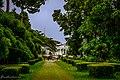 Kebun Raya Bogor 12.jpg