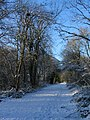 Kenilworth Greenway in the snow - geograph.org.uk - 1652839.jpg