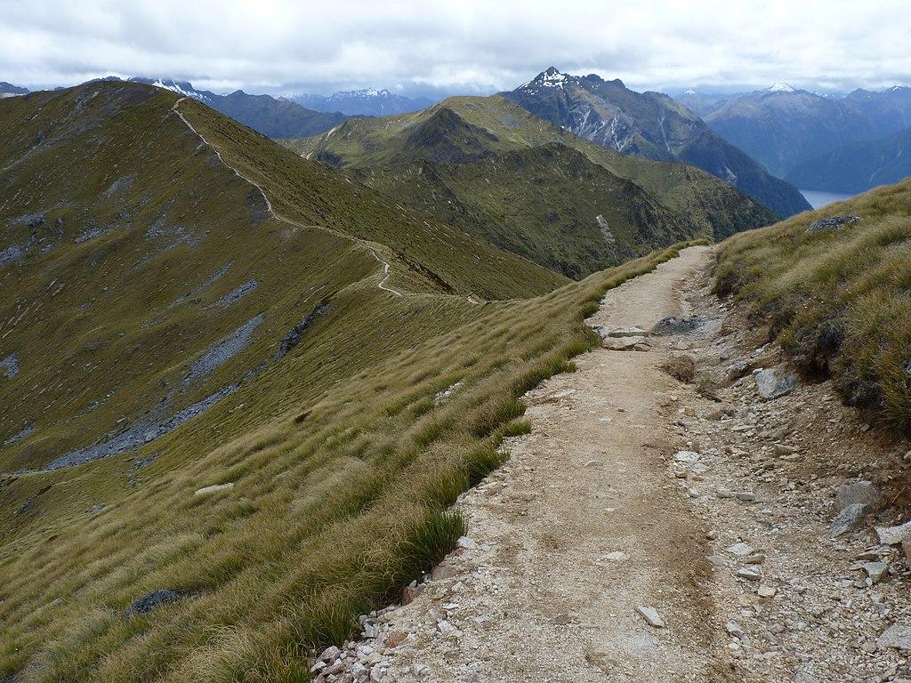 Kepler Track, New Zealand (57)