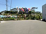 Koinobori near Taromaru Crossroads.JPG