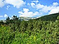 Kostenetz, Bulgaria - panoramio (7).jpg