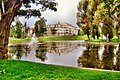 Kozi Staw w parku - panoramio.jpg