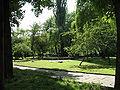 Krakow-os Urocze fontanna.jpg