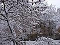 Kramatorsk, Donetsk Oblast, Ukraine - panoramio (4).jpg