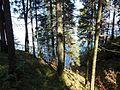 Kungursky District, Perm Krai, Russia - panoramio (185).jpg