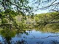 L'étang de la Vallée (Guémené-Penfao).JPG