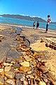Lázaro (Praia Domingos Dias), Ubatuba - SP, Brazil - panoramio.jpg