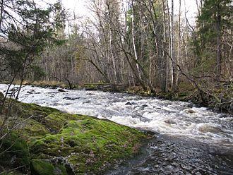 Örebro County - Image: Långforsen Järleån