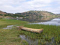 Lac Haïk-Ethiopie-Tankwa (1).jpg