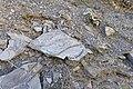 Lago di Campotosto 2015 by-RaBoe 060.jpg