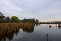 Lake Sinissippi - panoramio.jpg