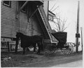 Lancaster County, Pennsylvania. An open-type convertible buggy peculiar to the Conservative Mennoni . . . - NARA - 521139.tif