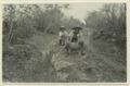Landsvägen mellan Ticul och Kabah, Labna, Sayil. (katalogkort) - SMVK - 0307.j.0086.tif