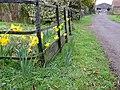 Lane to Kingston Dairy House - geograph.org.uk - 707263.jpg