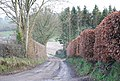 Lane to Lower Bridmore Farm - geograph.org.uk - 336907.jpg
