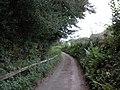 Lane to Waddon - geograph.org.uk - 1514848.jpg