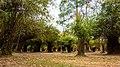 Laos - 4000 Islands (24245997413).jpg