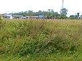 Lapangan Bola SalBa - panoramio.jpg