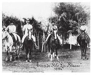 Campeonato Argentino Abierto de Polo - Las Petacas team of 1894. It would win the title in 1895 and 1896.