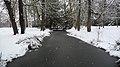 Le Parc de la Malmaison sous la neige - panoramio (10).jpg