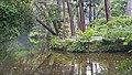 Le parc du grand sanctuaire shintoïste d'Ise (Japon) (29515701078).jpg