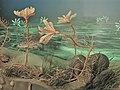 Lebensbild von triassischen Seelilien der Ordnung Holocrinida.jpg